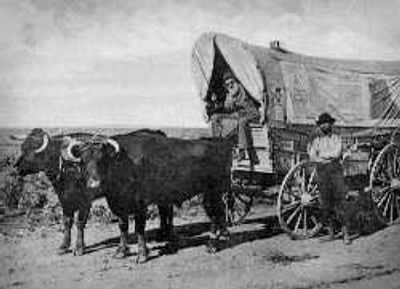 Traveling By Covered Wagon Was No Fun The Way I See It